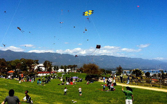 (Photo: Calgary Kites Festival official page)